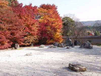 実相院の紅葉2010