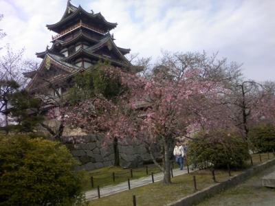 伏見桃山城2010
