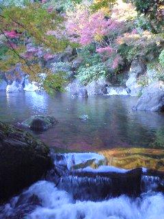 日本庭園 滝.JPG