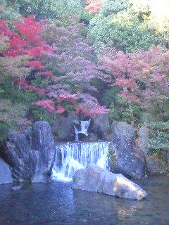 日本庭園 滝_0001.JPG