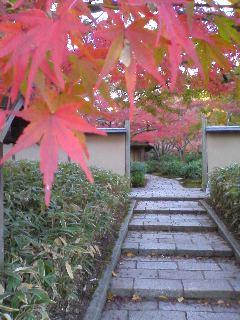日本庭園 茶室「庵・万里庵」_0009.JPG