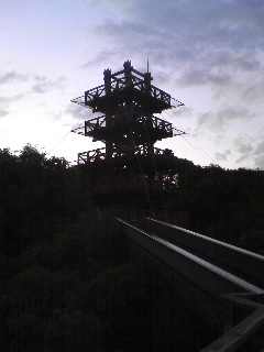 自然文化園 ソラード_0008.JPG