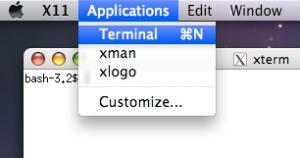 X11_terminal
