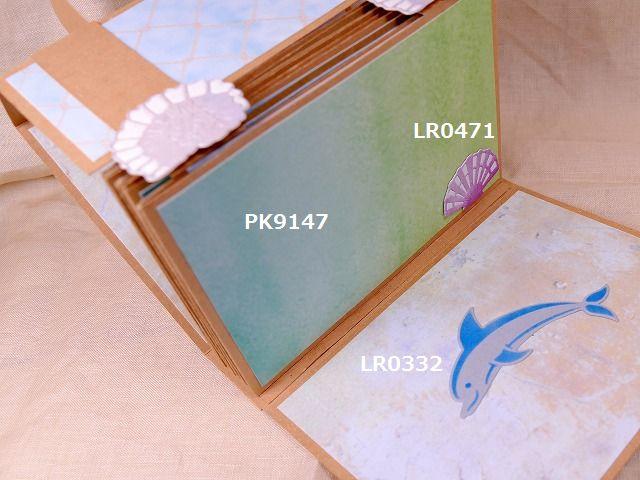 P2210661-6.jpg