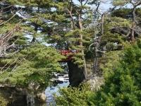 バイク旅(松島港)6