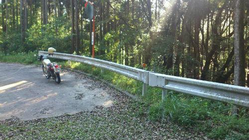 漆の林道2