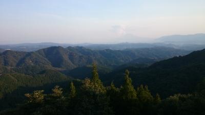 山桜と桜島