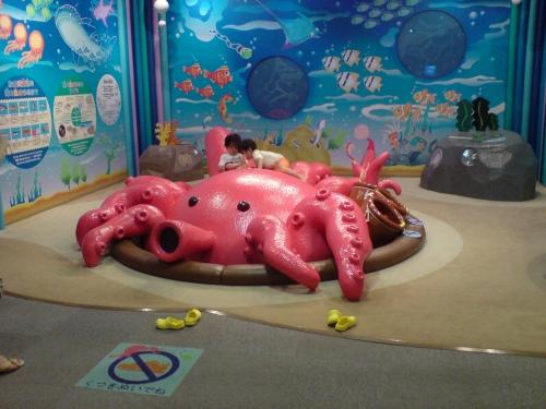 海洋文化センター内。明石のたこ