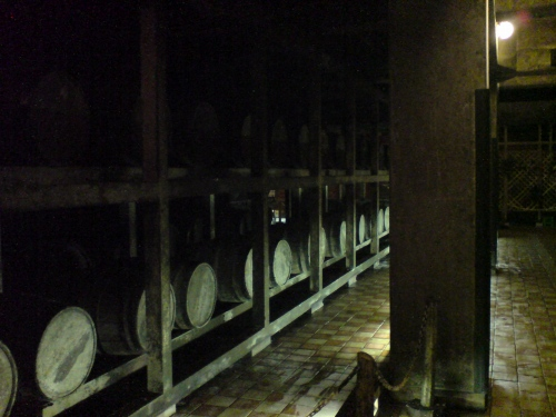 地下の熟成室。室温25度
