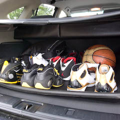 His sole collection
