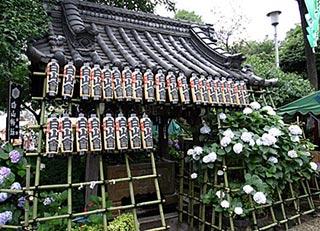 白山神社の手水場