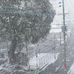 20120218 南区高宮雪景色