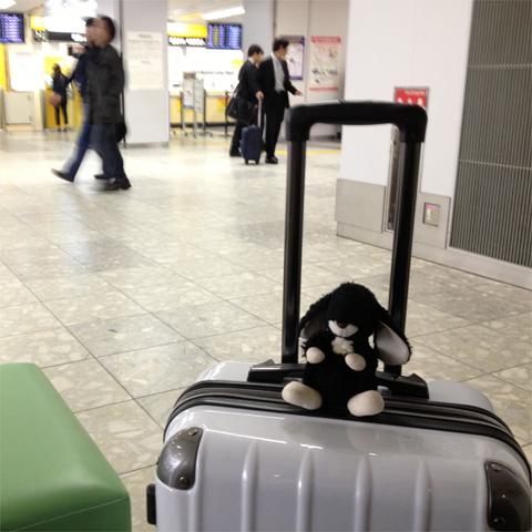 のんちゃんGW旅行記-福岡空港から東京へ行ってきます