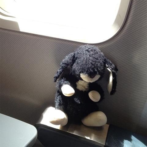 のんちゃんGW旅行記-黒ウサも旅行満喫してますっ!