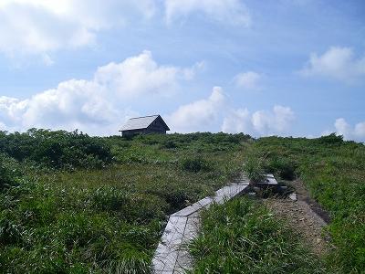 山頂の湿地帯