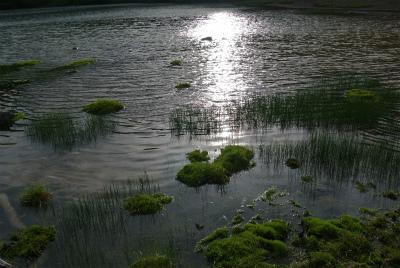弥陀ヶ池3