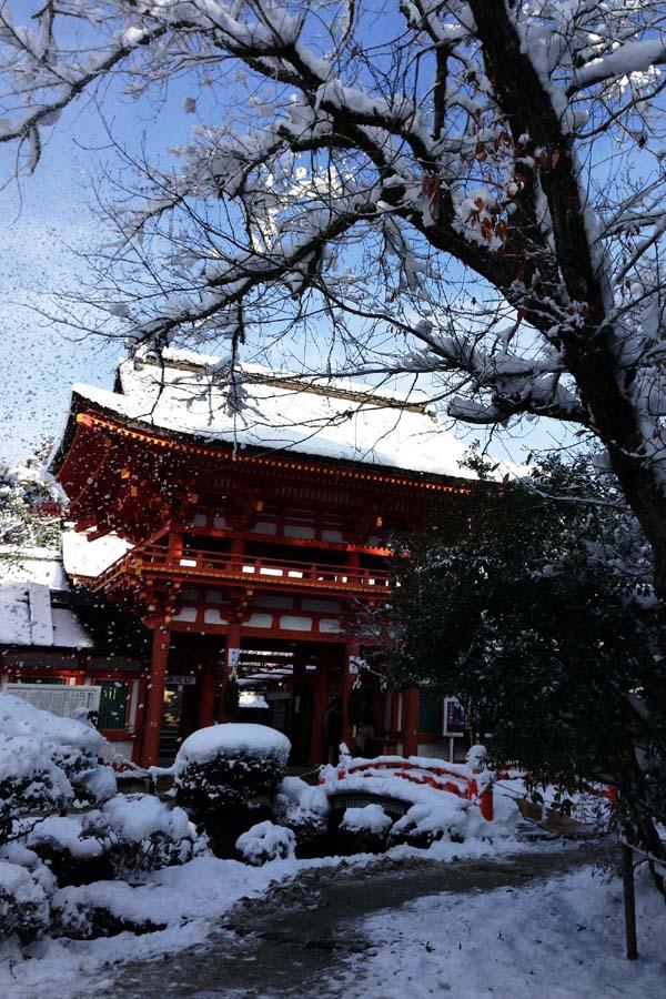 2015京都上賀茂雪景色03