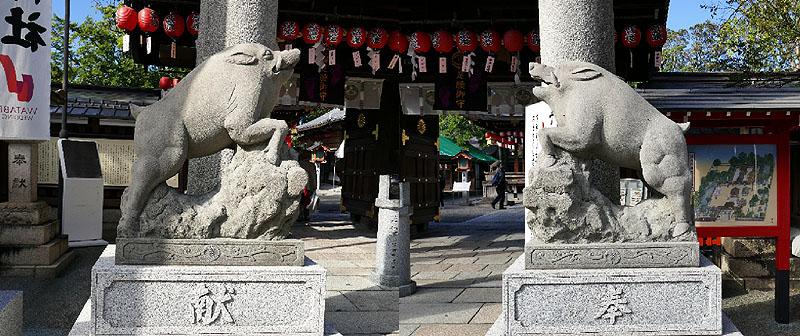 2019 護王神社イノシシ802.jpg
