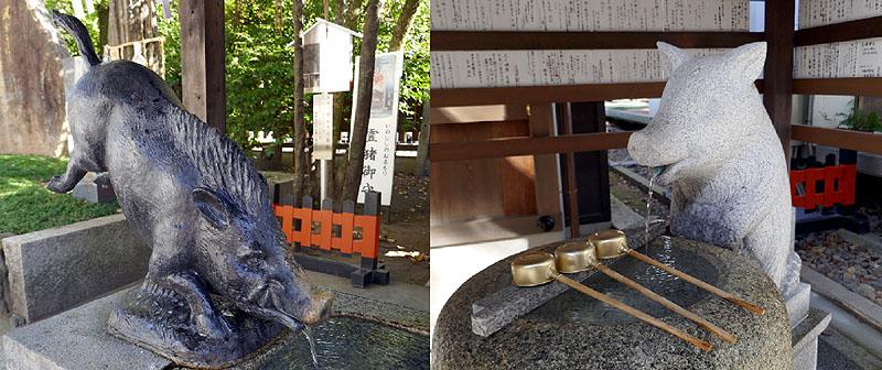 2019 護王神社イノシシ803.jpg