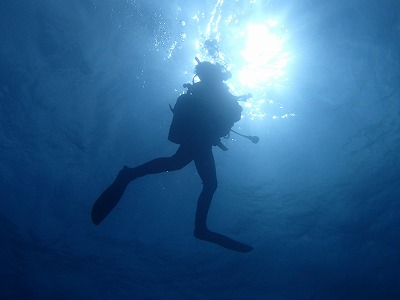 沖縄 ダイビング 一人旅