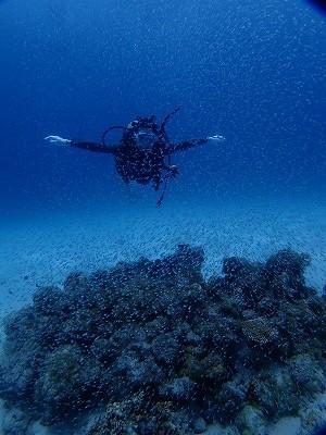 沖縄に卒業旅行でダイビング