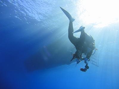 沖縄 ダイビング 4月