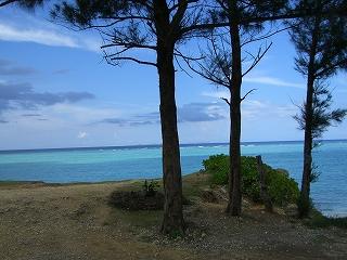 今帰仁村の海はサイコーでした