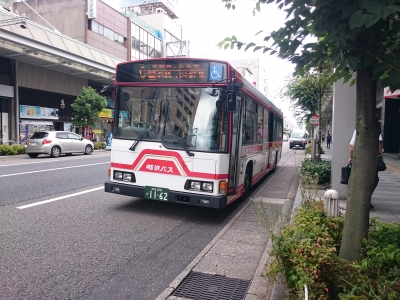 DSC_3117.JPG