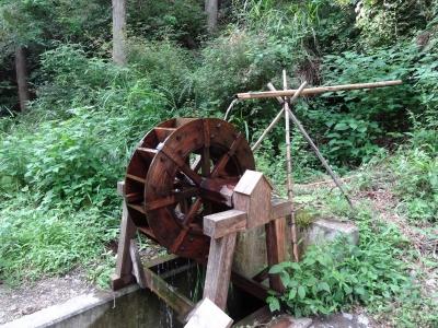 不動滝と塩郷の吊橋 | TOYBOXの...