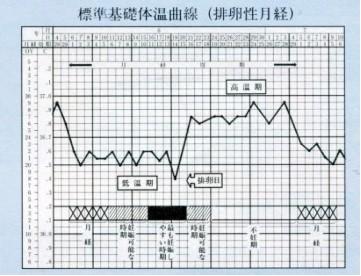 基礎体温曲線