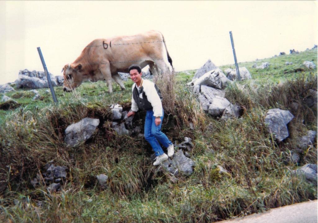 25年前カルスト