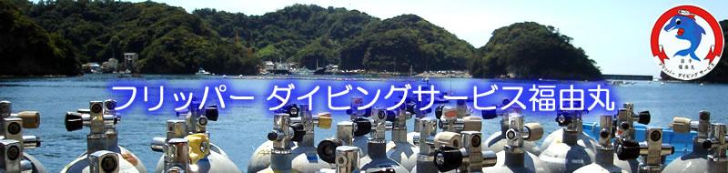 西伊豆ダイビングBlog
