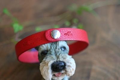 犬用ネーム入りチョーカー