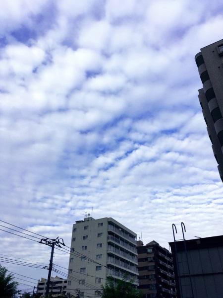 うろこ雲 なないろレザークラフト