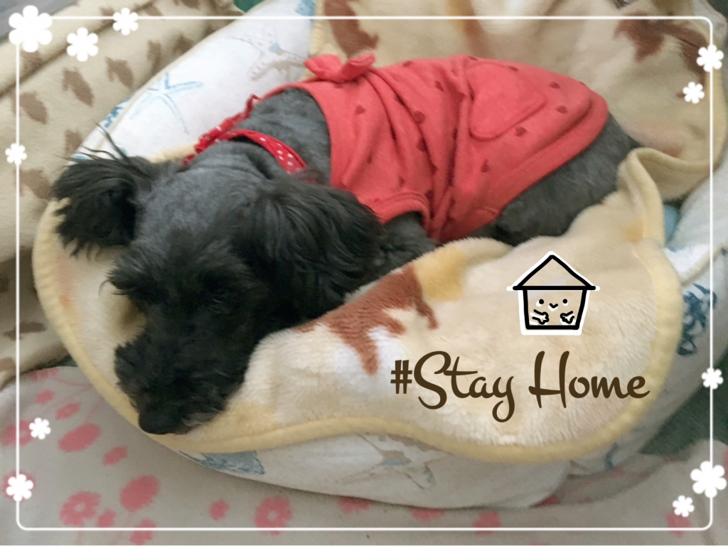 #Stay Home なないろレザークラフト