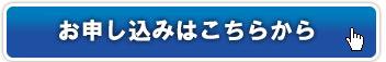 button09112013.jpg