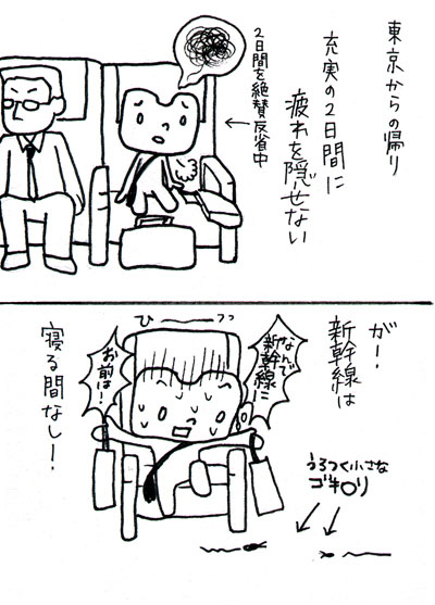 東京からの帰りは、虫との戦いでした