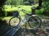 マイ自転車「白」
