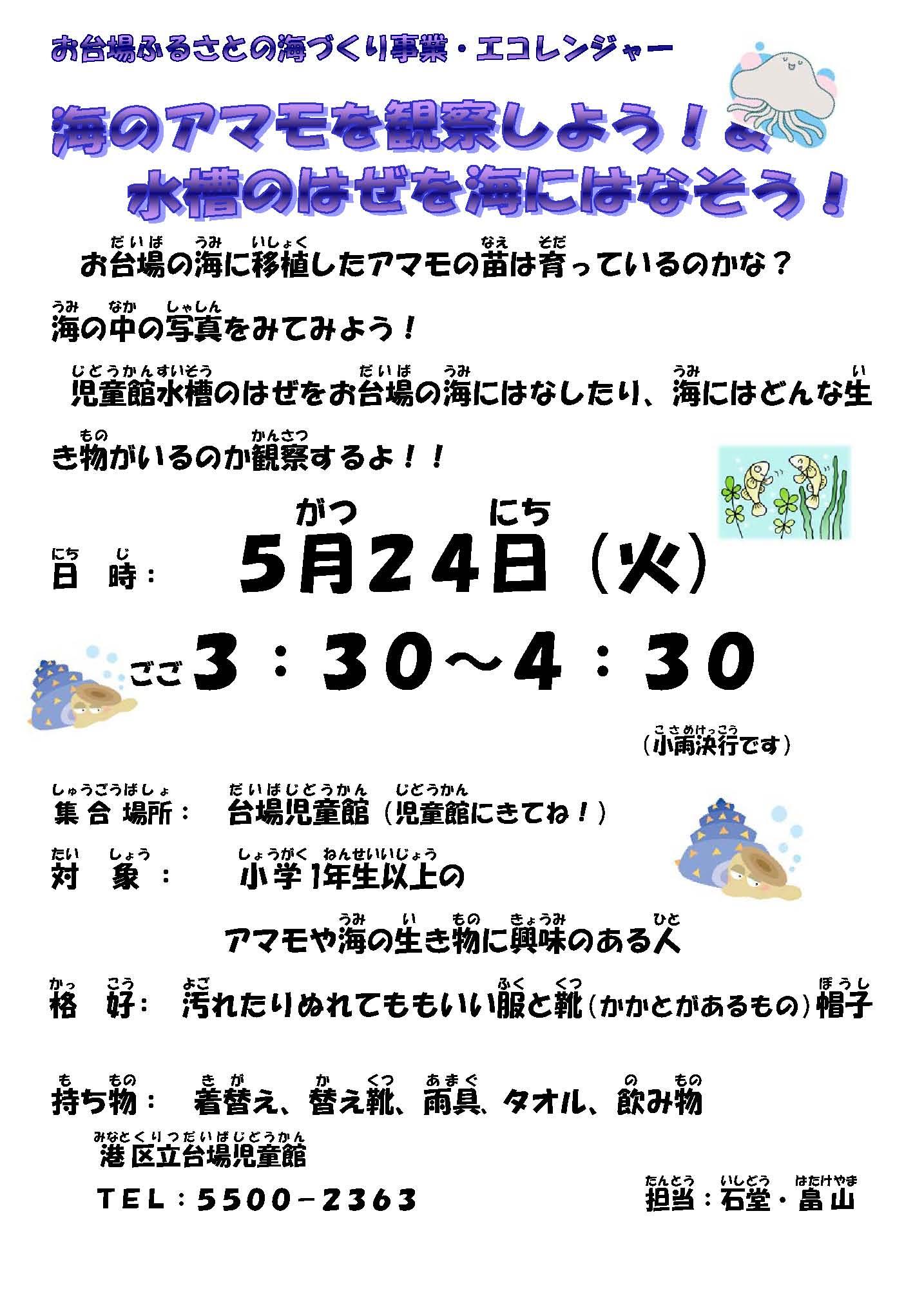 5月24日アマモ観察放流