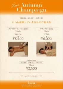 kaon_chirashi.jpg