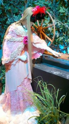 野薔薇姫1