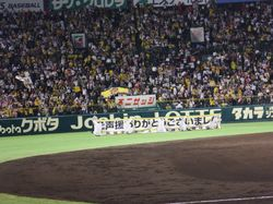 DSCF4356結果.JPG