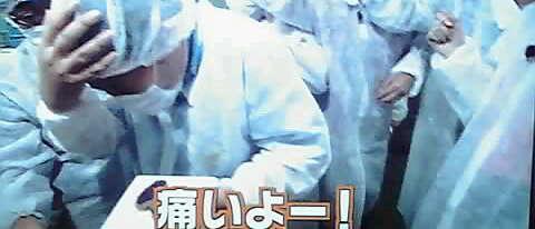 12-04-19_008~001.jpg