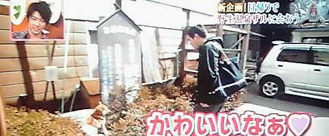 13-04-25_003~001.jpg