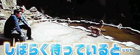 13-04-25_005~001.jpg