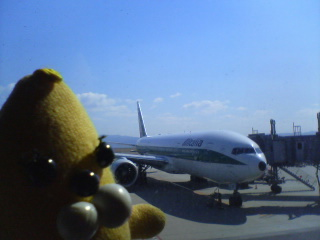 バナ夫と飛行機