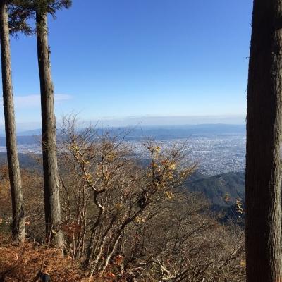 11月12日 愛宕山_518.jpg
