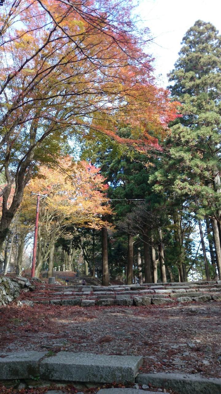 11月12日 愛宕山_2386.jpg