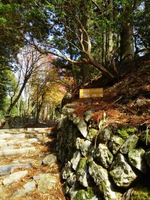 11月12日 愛宕山_4904.jpg