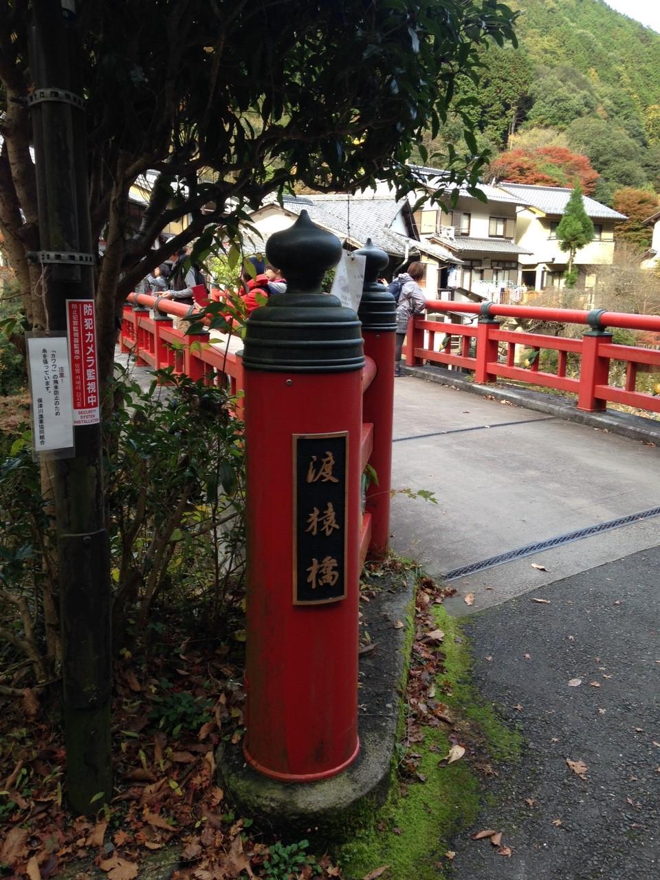 11月12日 愛宕山_8385.jpg